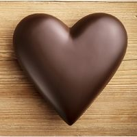 chocolatefixeseverything13