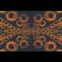 genesisnicole_