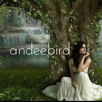 andeebird
