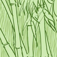 bamboo210